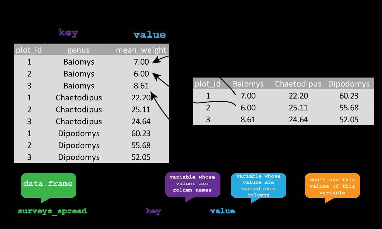 Data analysis and R programming